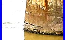 Коррозия бетона